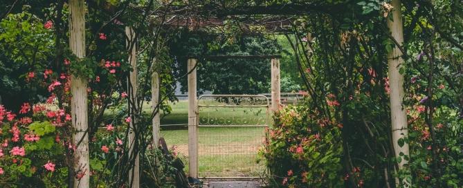 Secret Urban Garden